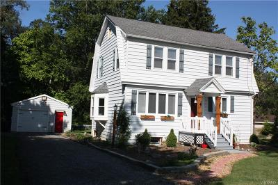 Orchard Park Single Family Home For Sale: 3090 Angle Road