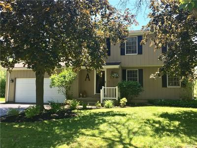 Orchard Park Single Family Home A-Active: 5421 Powers Road