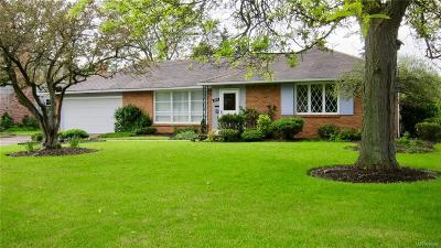 Amherst Single Family Home For Sale: 107 Dawnbrook Lane