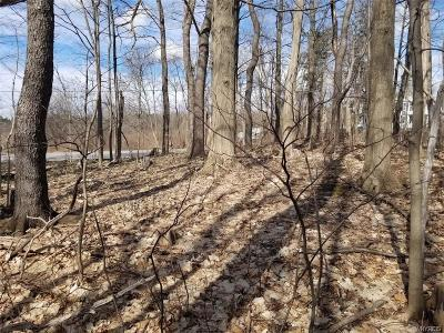Erie County Residential Lots & Land A-Active: Vl Big Tree Road
