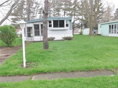 Evans Single Family Home For Sale: 1048 Karen Drive