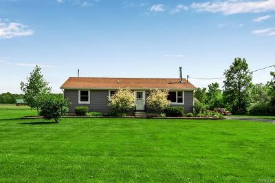 Niagara County Single Family Home For Sale: 7444 Akron Road