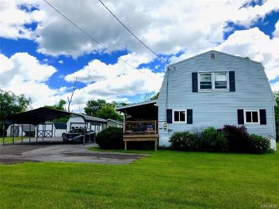 Cattaraugus County Single Family Home For Sale: 1996 Haskell Road