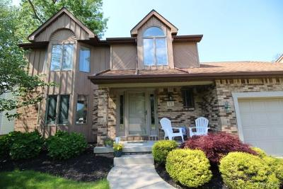 Amherst Single Family Home For Sale: 73 N Castlerock Ln