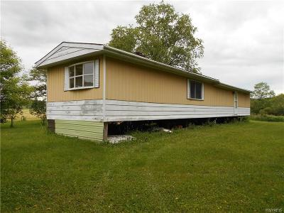 Allegany County, Cattaraugus County Single Family Home A-Active: 1901 Lyndon Road