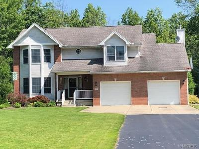 Grand Island Single Family Home For Sale: 2385 Fix Road