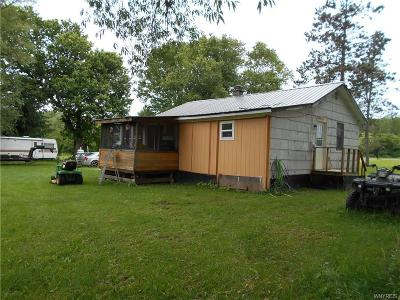 Allegany County, Cattaraugus County Single Family Home A-Active: 1923 Lyndon Road