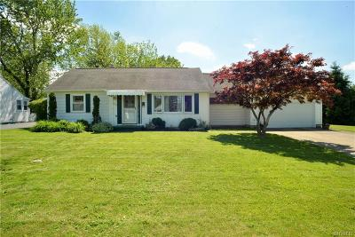 Amherst Single Family Home For Sale: 520 Lakewood Parkway