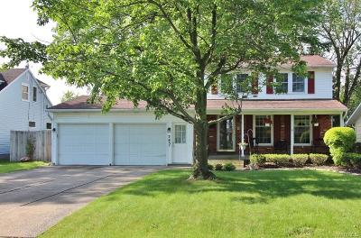 Amherst Single Family Home For Sale: 383 Willow Ridge Drive