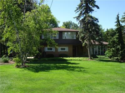 Amherst Single Family Home For Sale: 333 N French Road