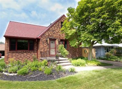 Lackawanna Single Family Home For Sale: 66 Wiesner Road