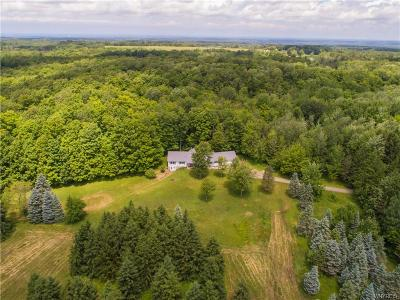 Cattaraugus County Single Family Home For Sale: 10659 W Perrysburg Road