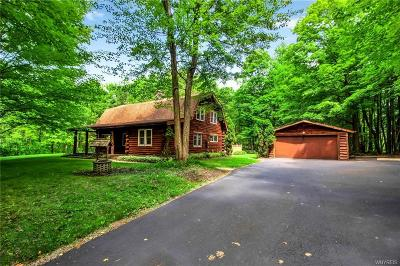 Orchard Park Single Family Home For Sale: 6255 Scherff Road