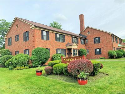 Amherst Condo/Townhouse For Sale: 3901 Main Street #1A
