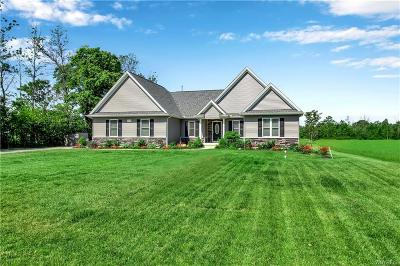 Niagara County Single Family Home For Sale: 6449 Bartz Road