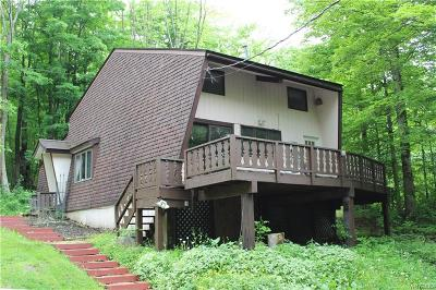 Ellicottville Single Family Home For Sale: 5504 Bryant Hill Road