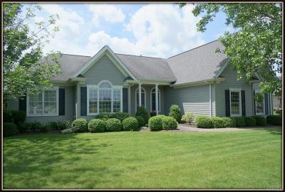 Niagara County Single Family Home For Sale: 5428 Pinecrest Drive