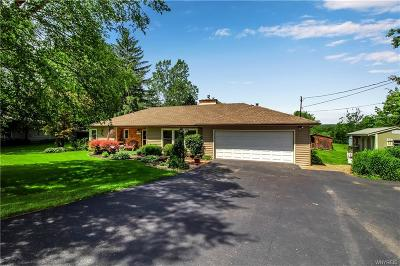 Aurora Single Family Home For Sale: 995 Mill Road
