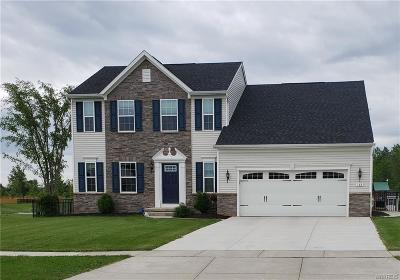 Grand Island Single Family Home For Sale: 148 Windham Lane