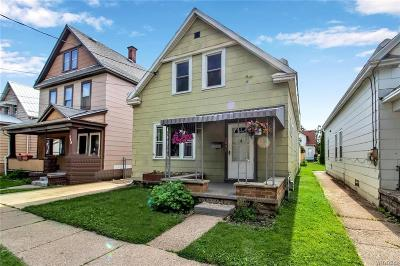 Buffalo Single Family Home For Sale: 286 Cable Street