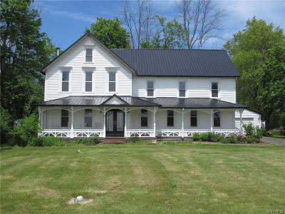 Grand Island Single Family Home For Sale: 2189 Love Road