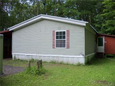 Cattaraugus County Single Family Home For Sale: 4042 Fish Hill Road