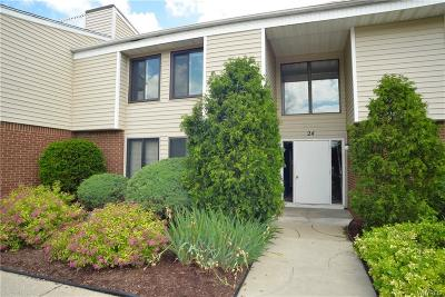 Amherst Condo/Townhouse For Sale: 24d Coolbrook Court
