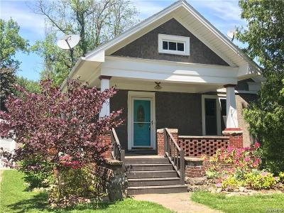 Niagara County Single Family Home For Sale: 8677 Coleman Road