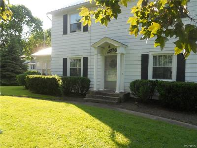 Genesee County Single Family Home For Sale: 8497 Route 237