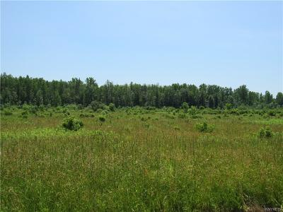 Genesee County Residential Lots & Land For Sale: Vacant Lot Bell Road