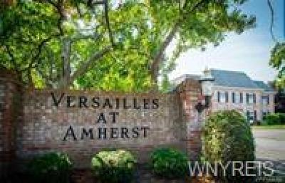 Amherst NY Condo/Townhouse For Sale: $119,900