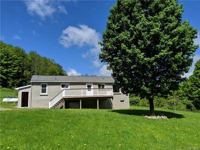 Ellicottville Single Family Home For Sale: 5245 W Fancy Tract Road