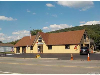 Commercial For Sale: 5034 Route 219s