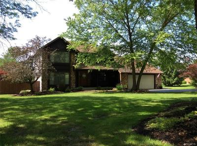 Erie County Single Family Home For Sale: 933 Mill Road