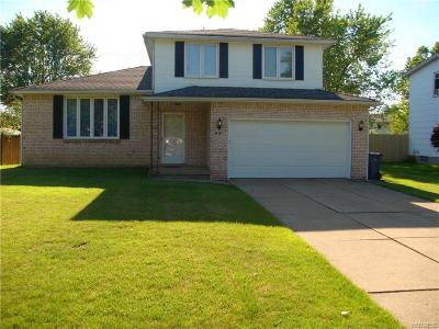 Amherst NY Single Family Home For Sale: $230,000