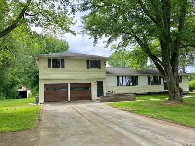 Akron Single Family Home For Sale: 7392 Maple Road