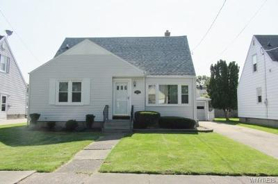 Niagara Falls Single Family Home For Sale: 243 83rd Street