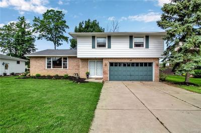Erie County Single Family Home For Sale: 66 Hemlock Drive