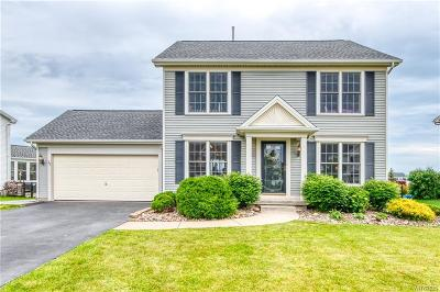 Erie County Single Family Home For Sale: 20 Ashwood Court
