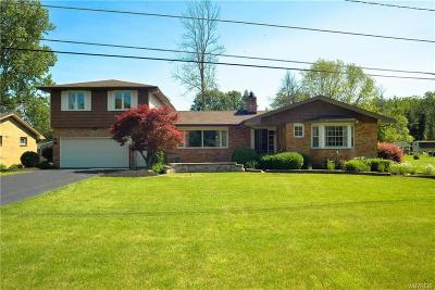 Erie County Single Family Home For Sale: 860 Creekside Drive