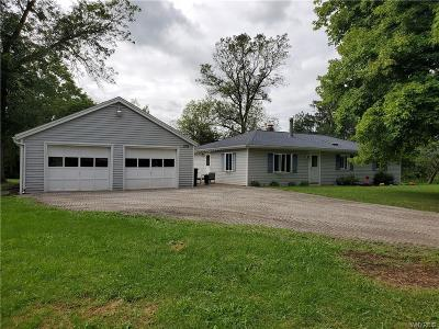 Niagara County Single Family Home For Sale: 1722 County Line Road