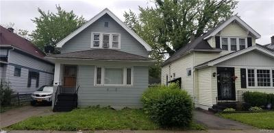 Buffalo Single Family Home For Sale: 117 Hewitt Avenue