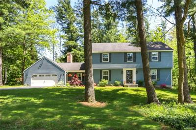 Orchard Park Single Family Home For Sale: 15 Tanglewood Drive
