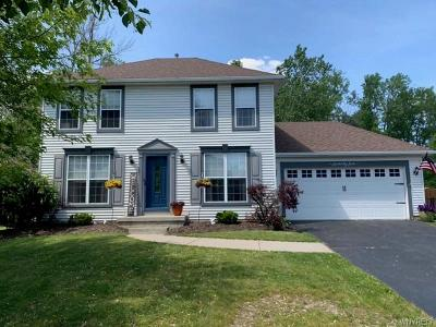 Amherst Single Family Home For Sale: 75 Hitching Post Lane