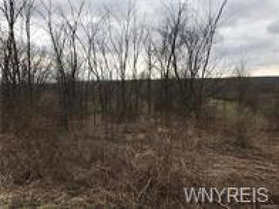 Erie County Residential Lots & Land For Sale: V/L Gowanda State Road