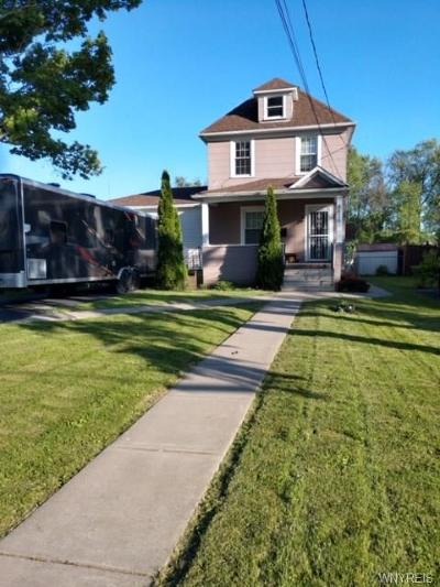 Niagara County Single Family Home For Sale: 8825 Point Avenue