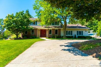 Orchard Park Single Family Home For Sale: 7472 Jewett Holmwood Road