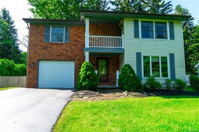Erie County Single Family Home For Sale: 801 Martin Drive