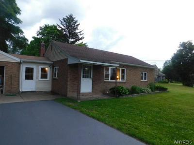 Cattaraugus County Single Family Home For Sale: 10209 Broadway Road