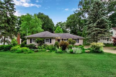 Erie County Single Family Home For Sale: 82 Highland Avenue